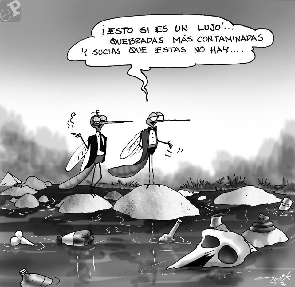 Caricatura zancudos